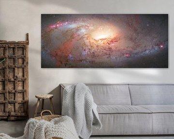 Das Herz einer Galaxie von André van der Hoeven