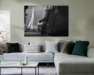 Der Schwan überragt alles andere, Rotterdam von Wouter Springer