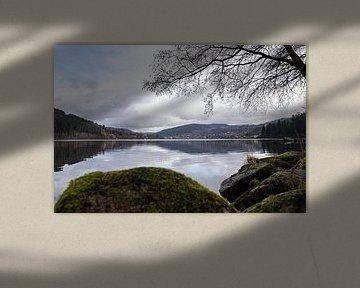 Spiegelung im Geradmer-See von Alexander Wolff