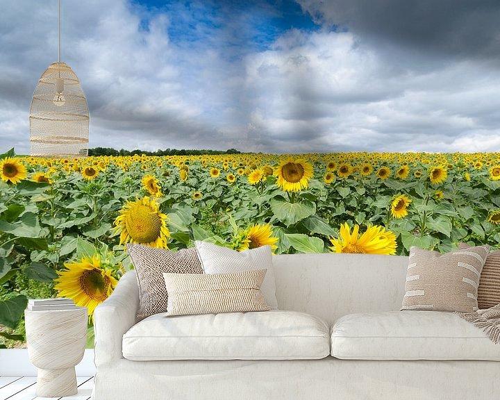 Beispiel fototapete: Ein Feld voller Sonnenblumen von Mark Bolijn