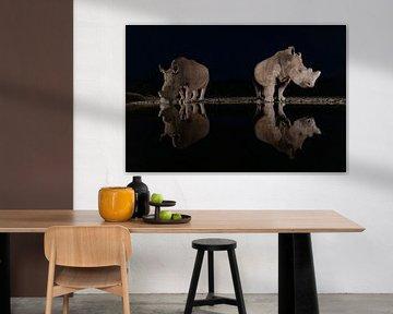 Twee witte neushoorns in het donker bij een drinkplaats van Peter van Dam