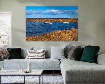 Boten op de Oostzee op het eiland Moen in Denemarken van Rico Ködder
