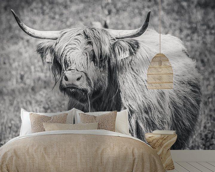 Sfeerimpressie behang: Schotse hooglander met grasspriet, Highlander cow van Michèle Huge