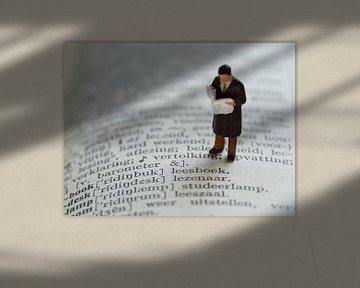 Man met krant #5 van Lex Schulte