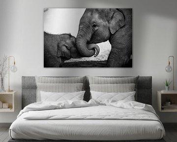 Verspielte Elefanten in Schwarz-Weiß von Nick van der Blom