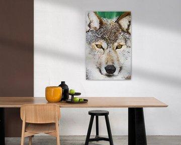 Wolf von Renée Prevoo