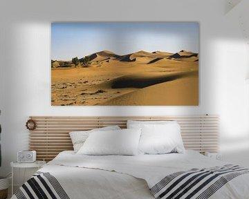 Hautes dunes de sable dans le Sahara (Erg Chegaga)
