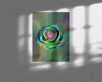 Popart Rose in Grün von Claudia Gründler