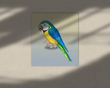 Blau-Gelb-Ara von Bianca Wisseloo