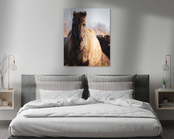 Sfeerimpressie: De (leidmerrie) kudde leider van een kudde wilde Konikpaarden in Oostvaardersplassen van Maarten Oerlemans