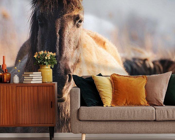 Sfeerimpressie behang: De (leidmerrie) kudde leider van een kudde wilde Konikpaarden in Oostvaardersplassen van Maarten Oerlemans
