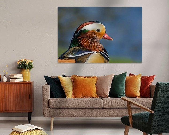 Impression: Portrait de tête Canard mandarin sur Remco Van Daalen