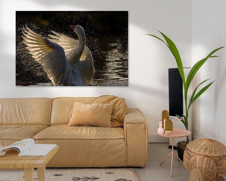 Impression: L'oie déploie ses ailes en pleine lumière sur Remco Van Daalen