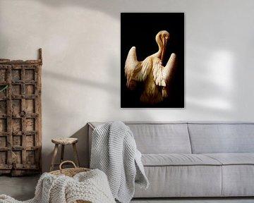 The pelican von Angela Dölling