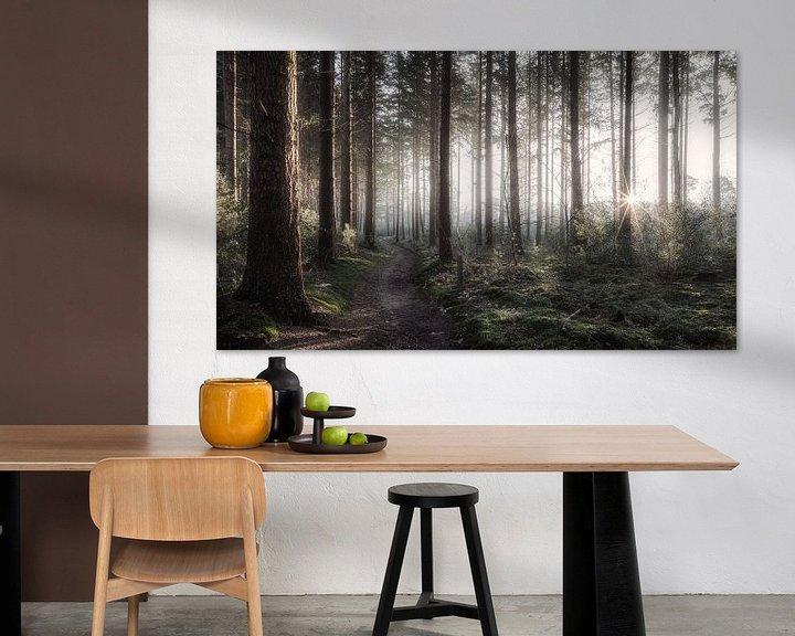 Impression: Forest sur Reinier Snijders