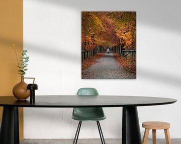 Herfst wandeling van Koen Sachse
