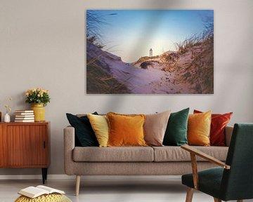 Een blik door de duinen van Florian Kunde