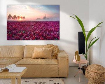 Rode tulpen met molen silhouet van John Leeninga