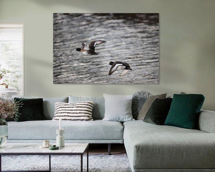 Sfeerimpressie: Vliegende eenden van EFFEKTPHOTOGRAPHY.nl