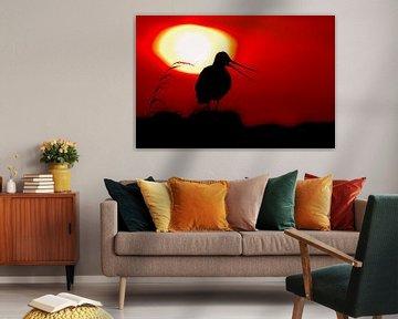 Roepende Grutto met ondergaande zon van Beschermingswerk voor aan uw muur