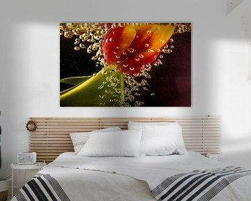 Tulpenblasen von natascha verbij