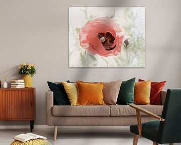 Pastel Poppy van Yvonne Blokland