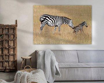 Zebrabevalling van Angelika Stern