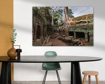 Ta Prohm,  Angkor, Cambodja van Henk Meijer Photography