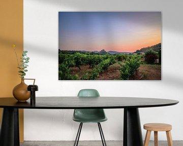 Sonnenuntergang über den Weinbergen von Michel de Jonge