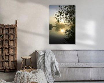 Bomen op de Ruhroever van Bernhard Kaiser