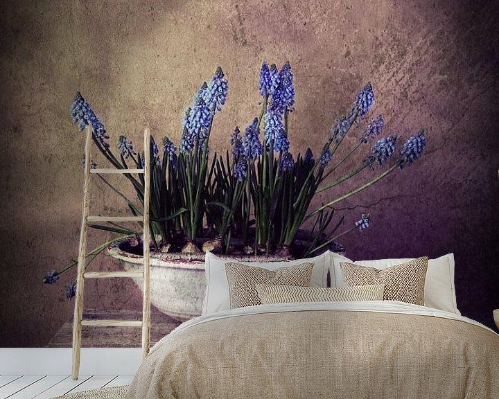 Beispiel fototapete: Blaue Trauben im Rampenlicht! von Els Fonteine