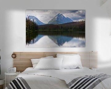 Jasper National Park, staat Alberta, Canada van Alexander Ludwig