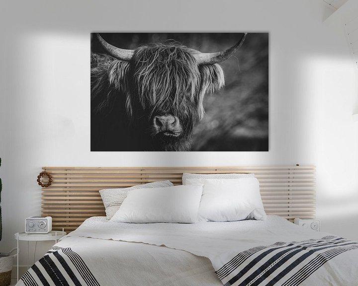 Beispiel: Nahaufnahme einer schottischen Highlander-Kuh in den Niederlanden in Schwarz-Weiß von Maarten Oerlemans
