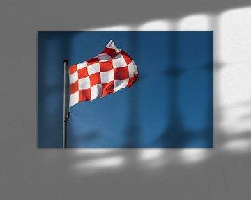 Vlag van Brabant van Elles Rijsdijk
