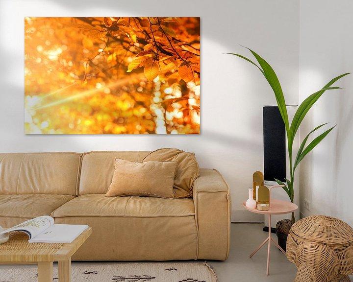 Sfeerimpressie: Herfst - Golden Brown van Cho Tang