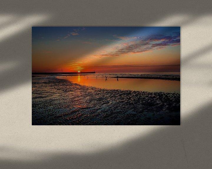 Sfeerimpressie: De vlucht van Alexandra Van den Bossche