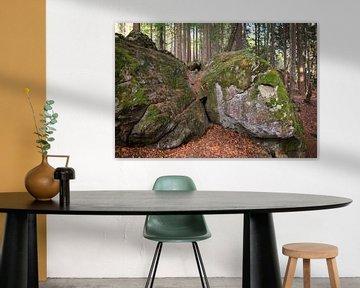 Des rochers dans la forêt, Bayerischer Wald, Allemagne sur Ger Beekes