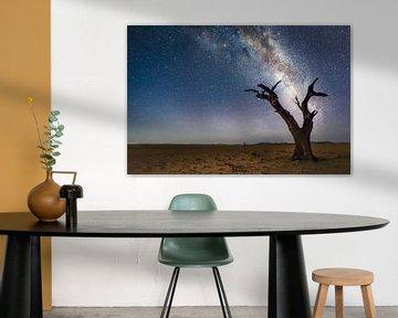 Namibie Melkweg van Peter Poppe