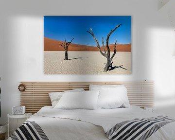 Dode bomen in de woestijn van Namibië van OCEANVOLTA