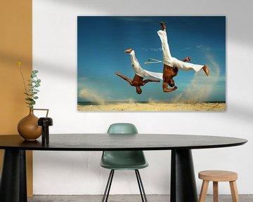 Capoeira van Terry De roode