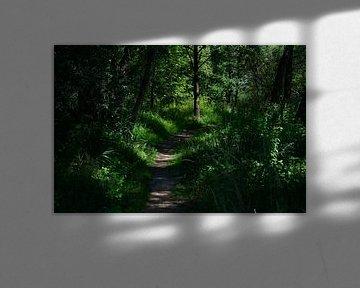 groen pad van Dirk Driesen
