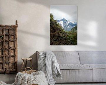 Alpenblumen und Alpenberg von Marije Zwart