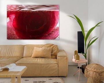 Rote Rose in Eis 3 von Marc Heiligenstein