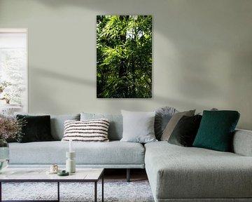 Bamboe verticaal in de jungle; bladeren jungle van Bianca ter Riet