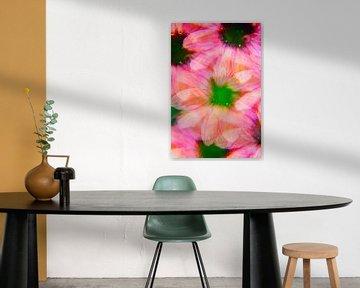 Rosa Echinacea von Kaat Zoetekouw