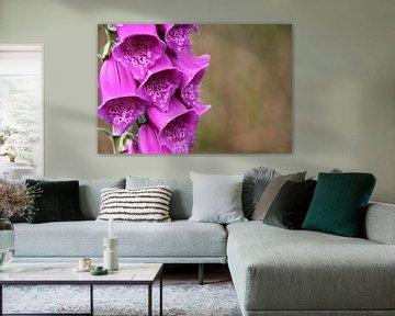 Der violette Kelch ist für jeden gut von Marije Zwart