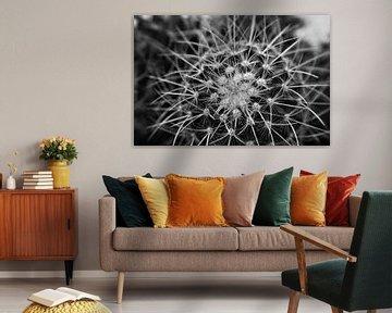 komplexer Kaktus von Marije Zwart
