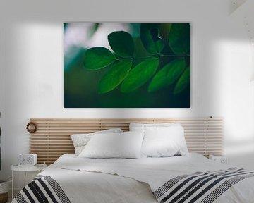 Feuilles vertes et pleines en automne sec sur Lizet Wesselman
