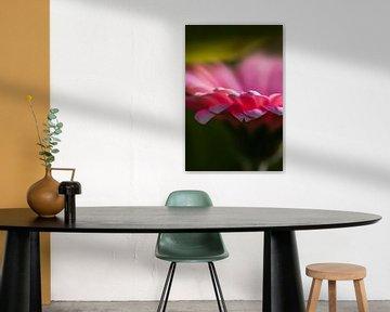 Blumendetail von Anouschka Hendriks