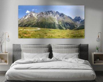 Schöne Berge hinter einer Bergwiese in Arolla, Evolène Region, Schweiz.